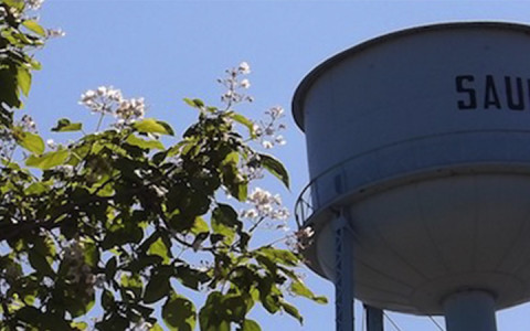 Saunemin Water Tower